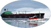 Marine Transport and Logistics